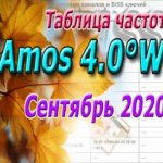 Таблица Amos 2020